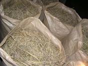 稲藁集め その2