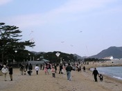 津田の凧揚げ大会4