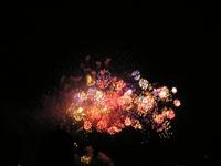 高松まつりの花火の写真1