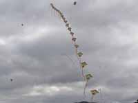 津田の凧揚げ2009の写真