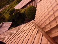 平成21年6月23日19時15分頃のmitzの部屋から外を見た写真