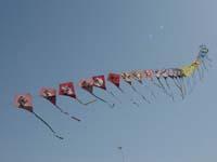 第16回津田の松原凧揚げ大会の写真②