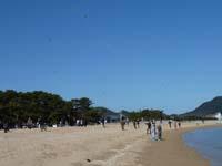 第16回津田の松原凧揚げ大会の写真①