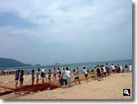 津田町地引き網の写真2010年7月30日②