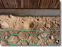 蟻地獄のすり鉢状のくぼみの写真