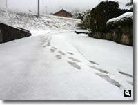 2011年2月14日津田町山手での雪の写真③