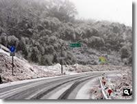 2011年2月14日津田町山手での雪の写真②