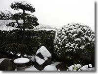 2011年2月14日津田町山手での雪の写真④