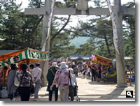 2011年津田石清水八幡宮 春市の写真②