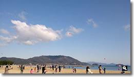第20回津田の松原凧揚げ大会の写真