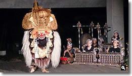 2014年8月2日 津田石清水神社 夏越祭 バロンの写真