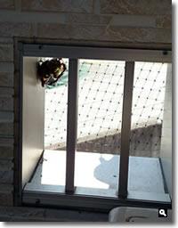 2018年8月7日 mitz自宅ベランダの蜂の巣の写真