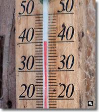 2020年8月16日 mitzの職場で40℃を超えた 写真