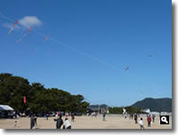 第16回津田の松原凧揚げ大会 の写真②